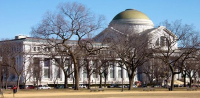 Perché negli USA rubano meno quadri?