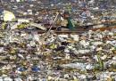 I cinque peggiori disastri ambientali in corso