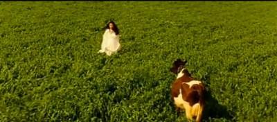 Bollywood in Svizzera