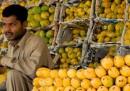 La diplomazia del mango