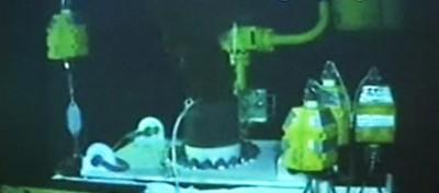 Petrolio nel golfo: la diretta della nuova cupola