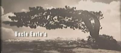 Le foto ritrovate di Ansel Adams forse non erano sue