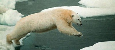 Russia e Norvegia trovano un accordo sulle risorse dell'Artico