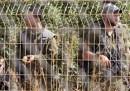 Il disincanto israeliano