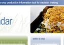 Un sito internet per combattere la fame in Africa