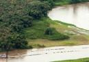 Costa Rica e Nicaragua litigano sul confine