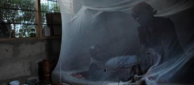 La lotta contro la malaria si complica