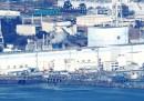 Fukushima sette giorni dopo