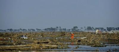 La regolarità degli tsunami
