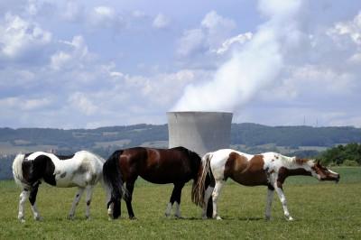 Cavalli e nucleare