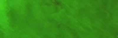 Il verde non è verde