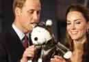Gli allegri viaggi americani di William e Kate