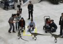 Dinosauri, delfini, leopardi e realtà aumentata