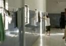 Le accuse di tortura in Libia