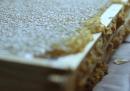 Come si raccoglie il miele