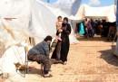 Quelli che scappano dalla Siria