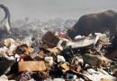 Sopravvivere ad Haiti