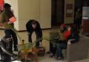 I militanti di Occupy nella filiale di Bank of America