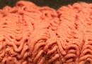 """Questa cosa si chiama """"pink slime"""""""