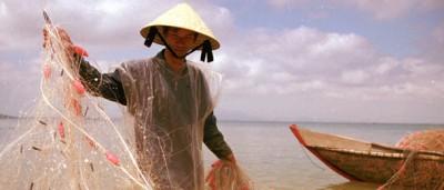 La misteriosa malattia in Vietnam