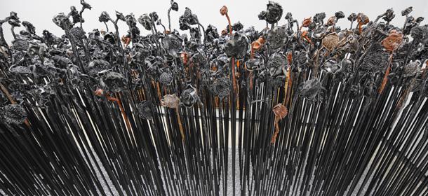 I girasoli di Xu Jiang