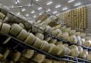 Gli effetti del terremoto su una fabbrica di parmigiano