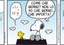 Peanuts 2012 giugno 2