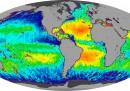 Dove sono più salati gli oceani?