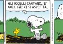Peanuts 2012 luglio 18