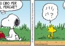 Peanuts 2012 luglio 21