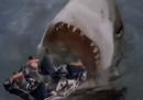 I migliori attacchi da parte di squali del cinema