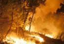 Gli incendi nella Castiglia e León