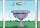 Peanuts 2012 agosto 22