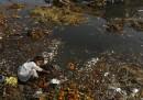 I fiumi inquinati dalla Durga Puja in India