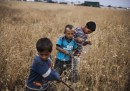 Azaz, Siria