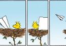 Peanuts 2012 ottobre 23