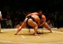 Nessuno vuole più fare il lottatore di sumo