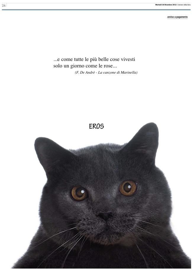 La pagina sul corriere per un gatto il post for Necrologio corriere della sera