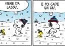 Peanuts 2012 dicembre 8