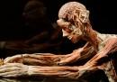I corpi di Body Worlds arrivano da?