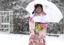 La neve in mezzo mondo