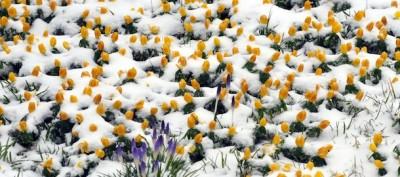 La neve in Germania
