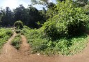 Montagne Google Street View - Kilimangiaro
