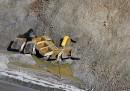 Frana miniera Bingham Canyon - Utah (Stati Uniti)