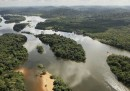 Brasile e Perù contro Amazon