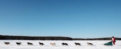 10 cose sull'Iditarod