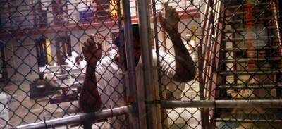 Guantanamo, la tortura e noi