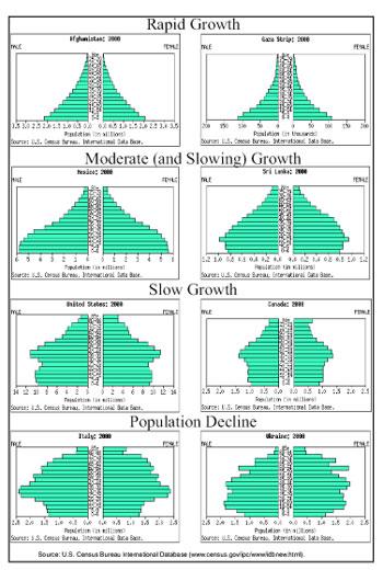 Che cos'è una piramide demografica