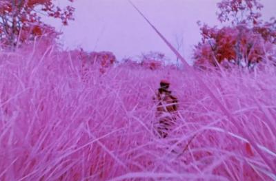 La guerra in Congo, rossa e rosa