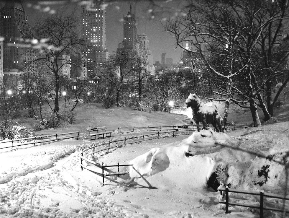 Central Park In Bianco E Nero Il Post